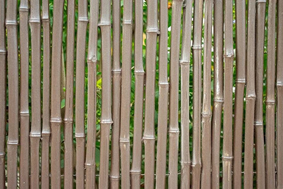 Cañas De Bambú Para Decoración Exterior